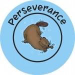 PERSEVERANCE copy